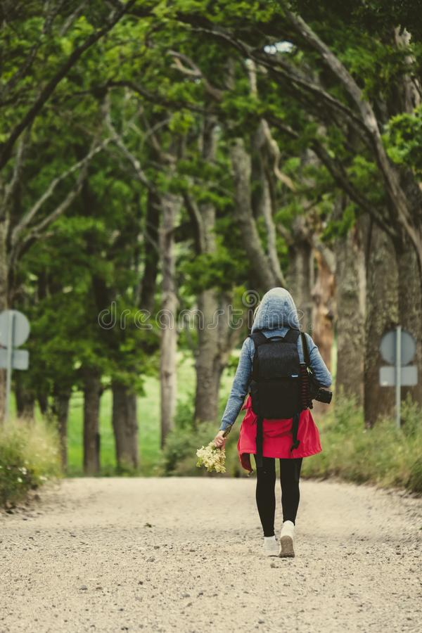 young woman enjoying nature trails royalty free stock image