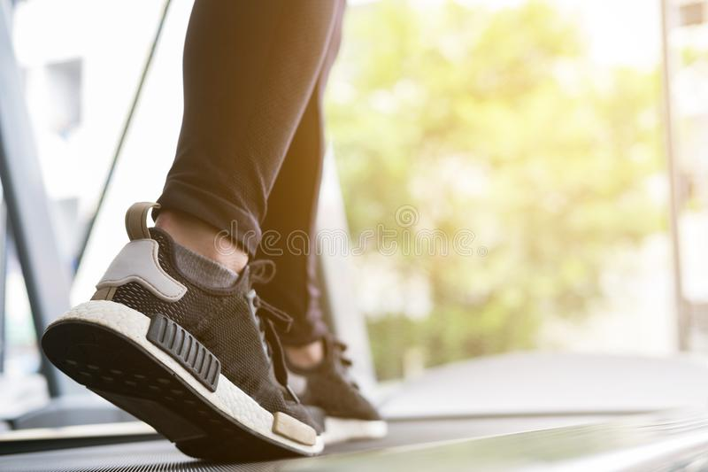 Young woman execute exercise in fitness center. female athlete w royalty free stock images