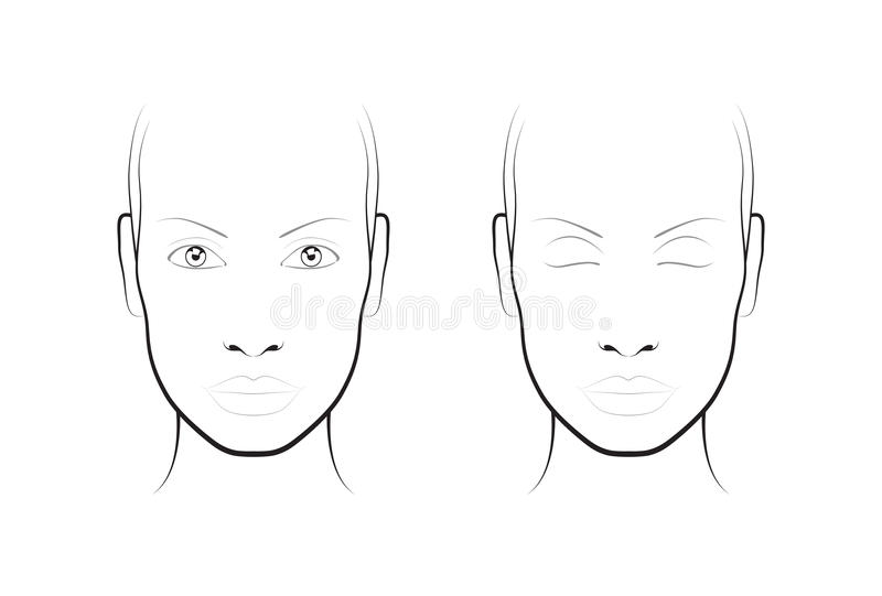 Young woman face chart makeup artist blank template stock face chart makeup artist blank template stock vector illustration pronofoot35fo Gallery