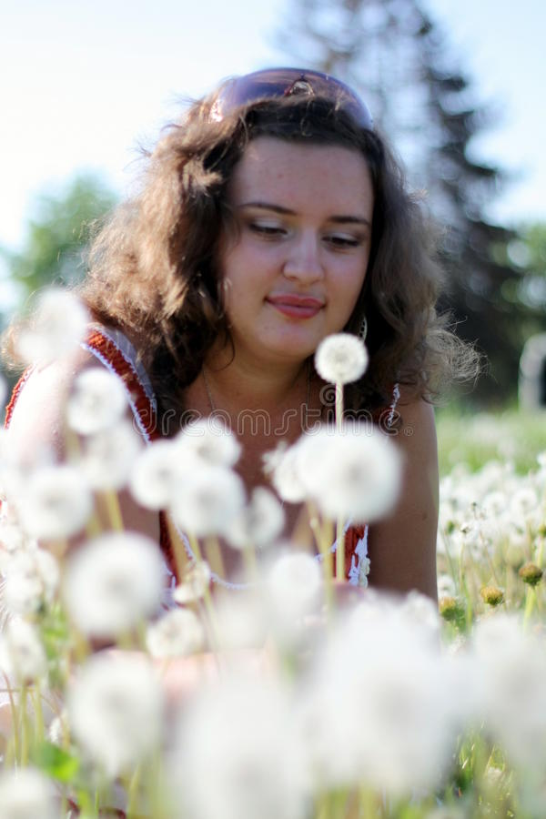 Young woman in a field with many dandelions stock photography