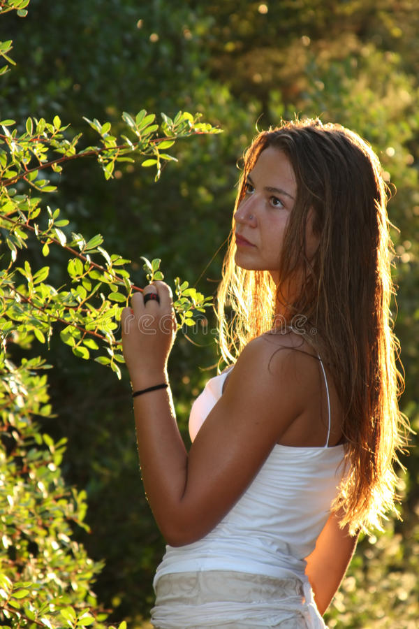 Young woman in a forest royalty free stock photos