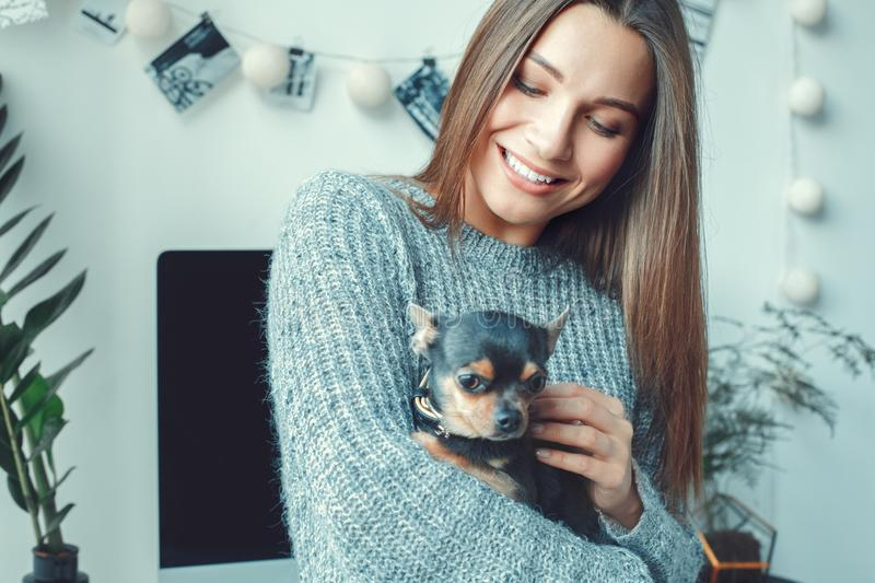 Young woman freelancer indoors home office concept casual style toy terrier close-up. Young female freelancer at home office casual standing holding toy terrier royalty free stock photos