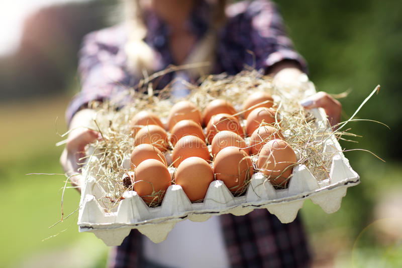 Young woman with fresh organic eggs. Picture of young woman with fresh organic eggs royalty free stock photo