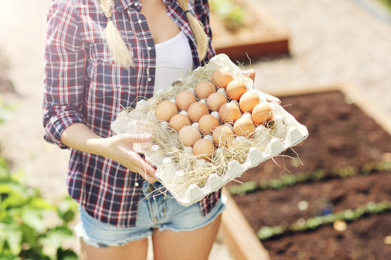 Young woman with fresh organic eggs. Picture of young woman with fresh organic eggs stock images