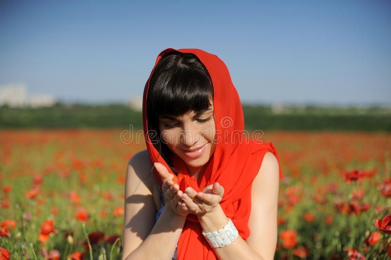 Young woman gazing at poppies royalty free stock photography