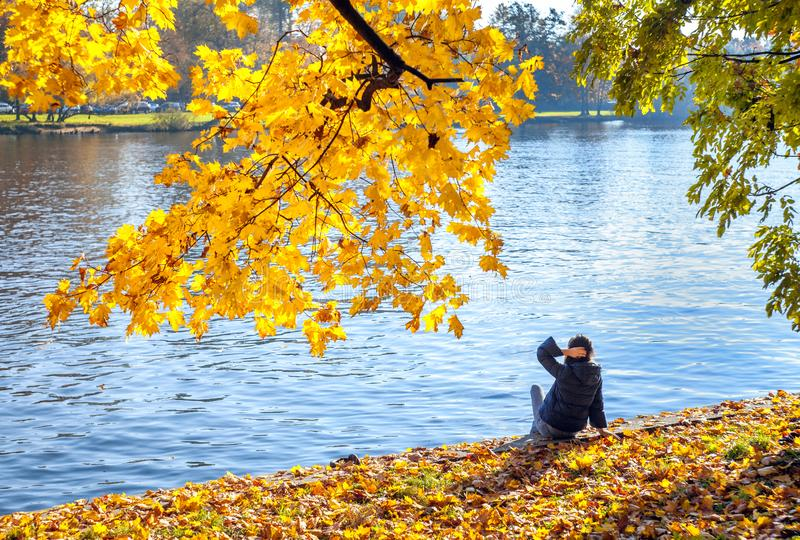Young woman girl sitting under autumn yellow leaves on maple branches against the background of the river royalty free stock photography