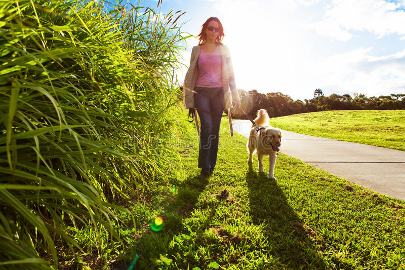 Young woman and golden retriever walking in the grass. Young woman and golden retriever walking in the long grass royalty free stock photo
