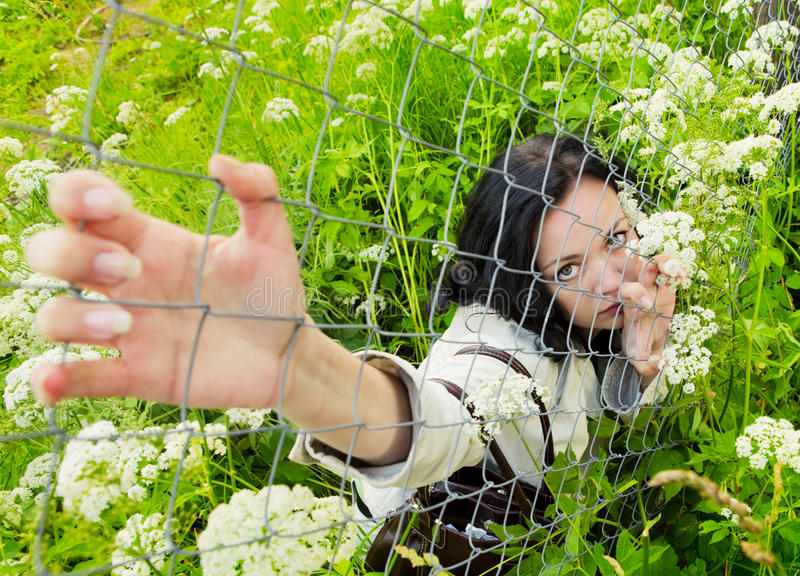 Young woman on a grass looking over wire fence stock photos