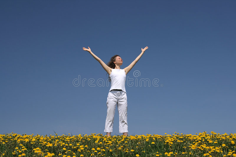 Download Young woman greets the sun stock photo. Image of flowering - 2595700