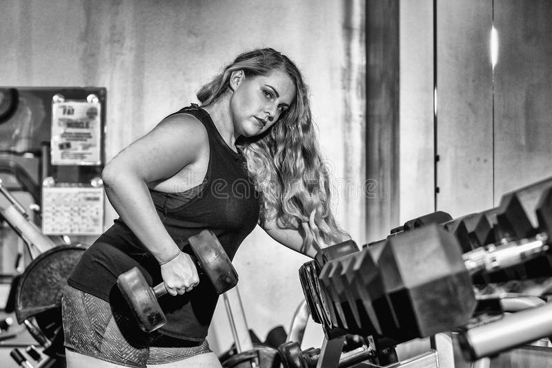 Young woman in the gym lifting weights royalty free stock photography