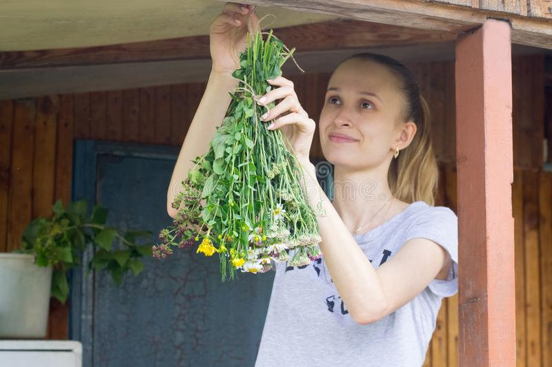 Young woman hang herbs to dry royalty free stock image