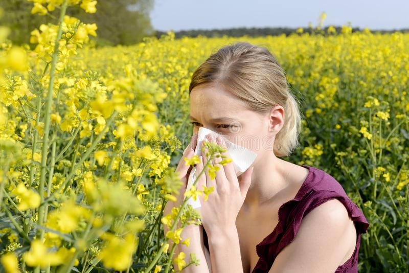 Woman has hay fever. Young woman has hay fever royalty free stock images