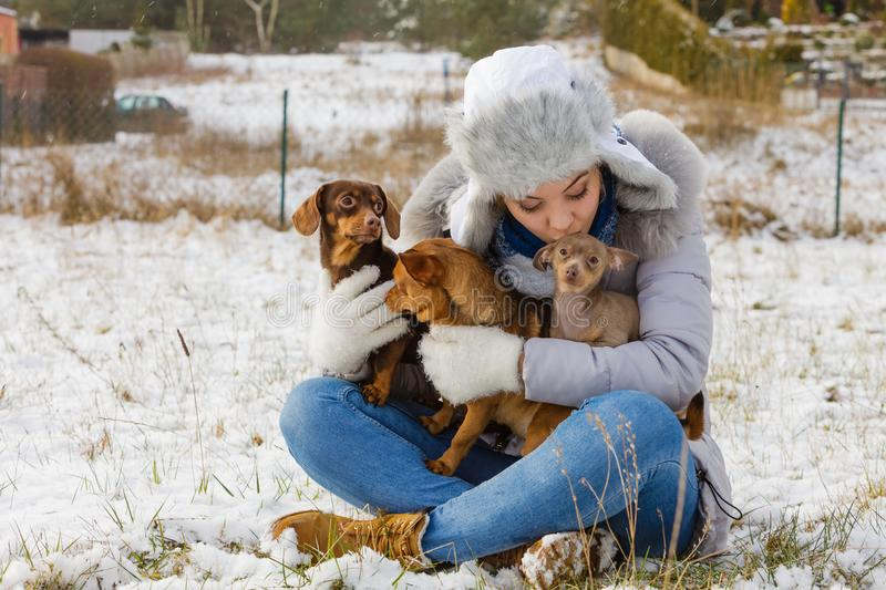 Woman playing with dogs during winter royalty free stock image