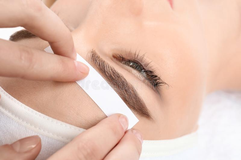 Young woman having professional eyebrow correction. Procedure in beauty salon stock images