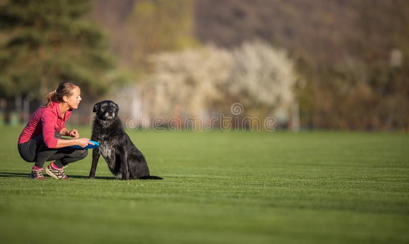 Young woman with her black dog outdoor, in a park playing frisbee royalty free stock images