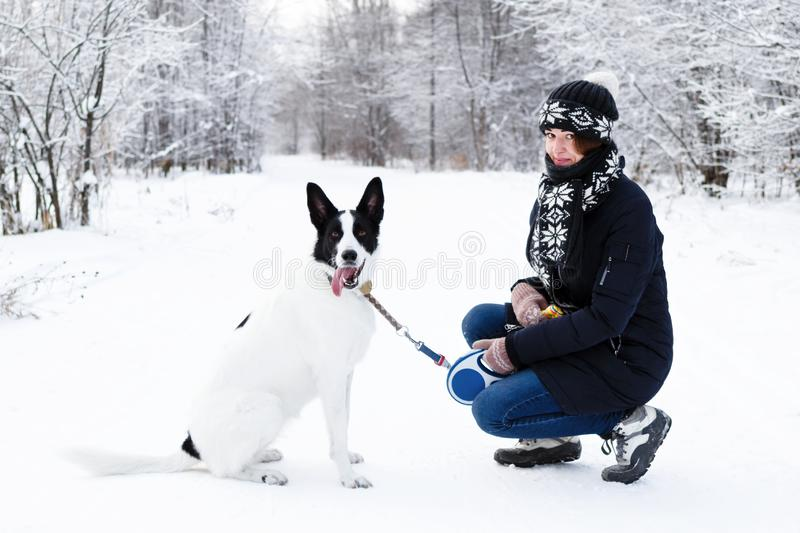 Young woman with her black and white dog on a walk in winter forest. Beautiful young woman with her black and white dog on a walk in winter forest royalty free stock photography