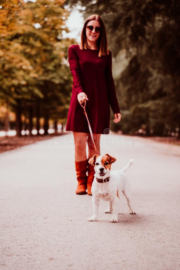 young woman and her cute jack russell dog walking in a park. Love for animals concept royalty free stock image