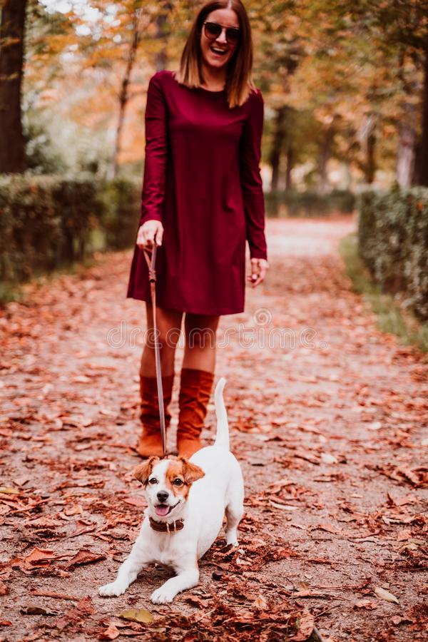 young woman and her cute jack russell dog walking in a park. Love for animals concept stock photo