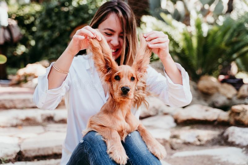 young woman and her cute puppy of cocker spaniel outdoors. Funny dog big ears stock images