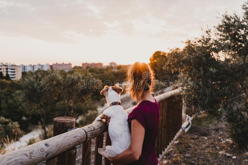 young woman and her cute small jack russell terrier dog watching sunset outdoors in a park. Golden hour. Love for animals concept stock photo