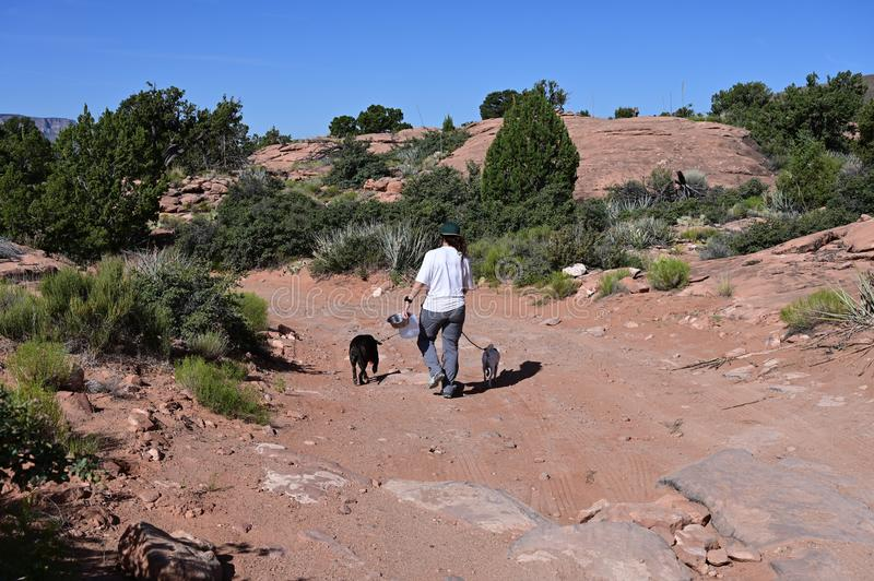 Young woman with her dog at Toroweap in the Grand Canyon. Young woman walks her dog on the rugged roads and trails at Toroweap in Grand Canyon National Park royalty free stock photography