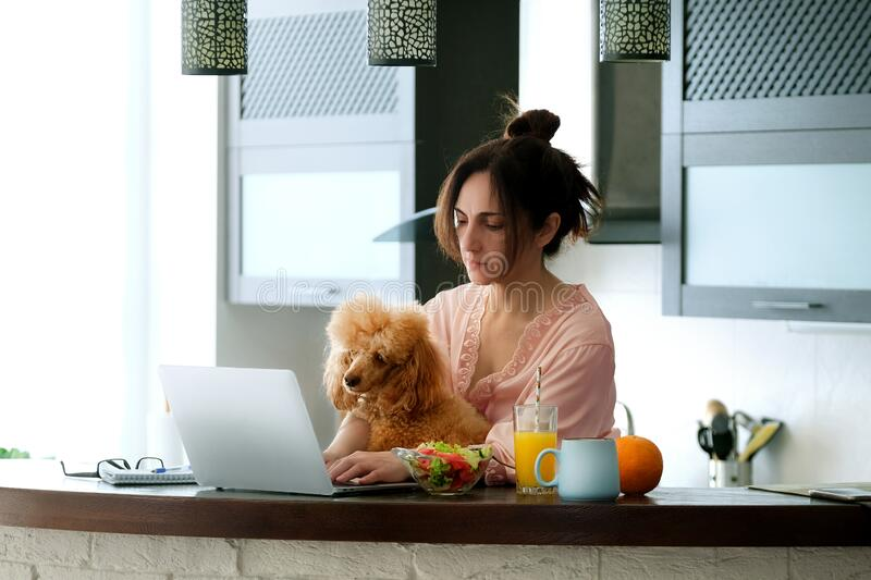 Young woman with her dog working using a laptop at home. The young woman is working remotely. Young woman with her dog working using a laptop at home. Concept royalty free stock photos