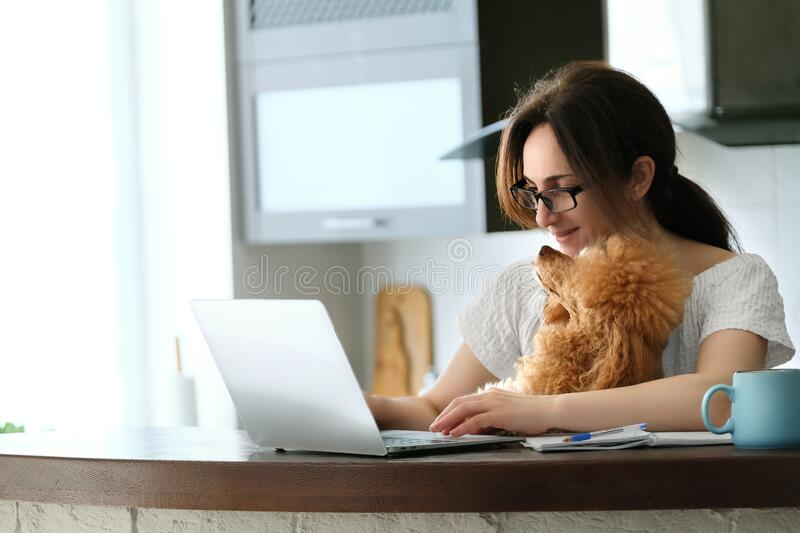 Young woman with her dog working using a laptop at home. The young woman is working remotely. Young woman with her dog working using a laptop at home. Concept stock image