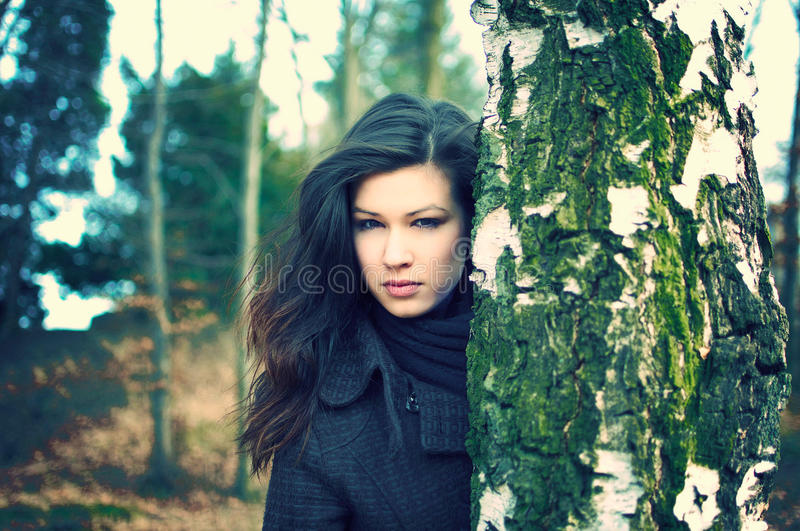 Young woman hiding behind birch tree stock image