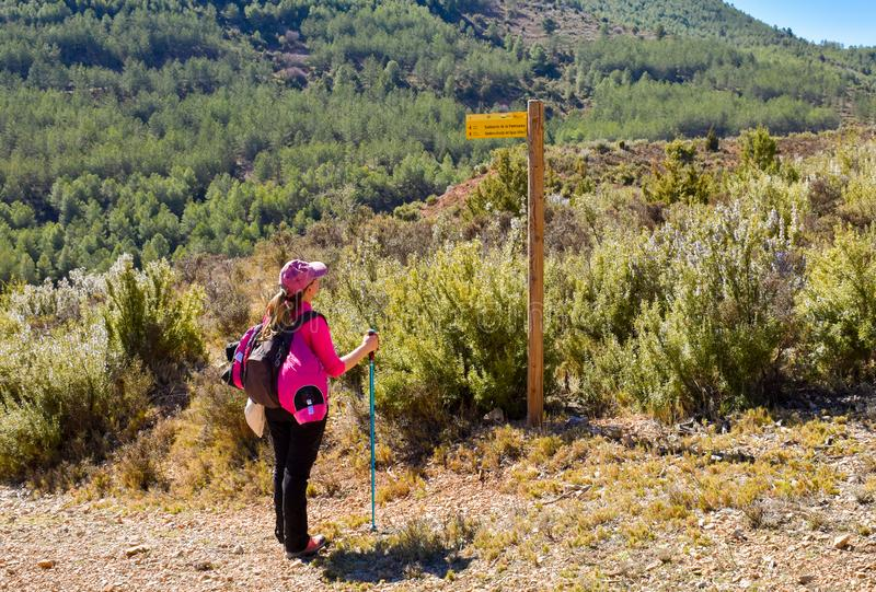 a young woman hiker with her backpack, cap and pole looking a wooden signpost next to a path way in the middle of a walking route stock photo