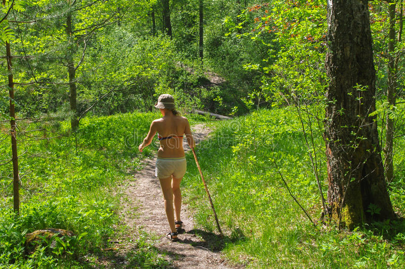 Young woman hiking through green forest path with a walking stick stock images