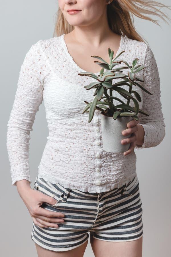 Young woman holding a beautiful Panda plant. Kalanchoe tomentosa royalty free stock photo
