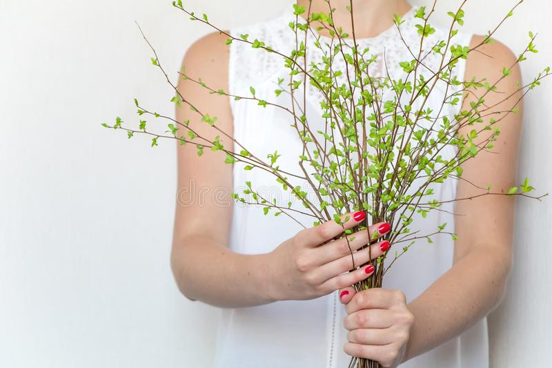 Young woman holding a bunch of green spring branches. Light elegant photo, eco and beauty concept stock photos