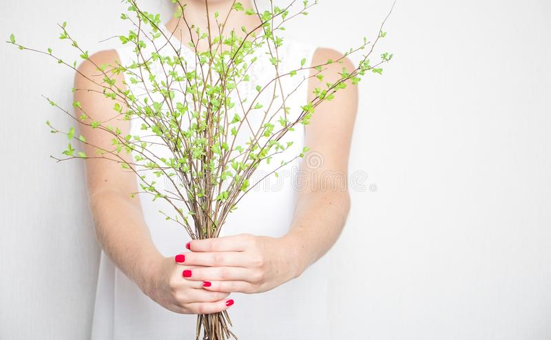 Young woman holding a bunch of green spring branches. Light elegant photo, eco and beauty concept royalty free stock photo