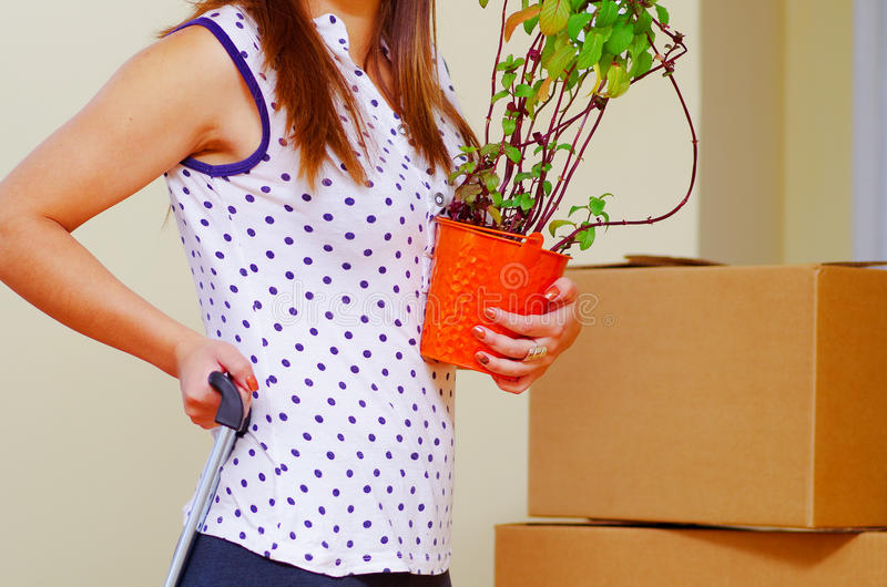 Young woman holding green plant and grabbing suitcase handle with the other, boxes stacked background, moving in concept stock photos