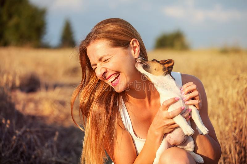Young woman holding Jack Russell terrier puppy on her hand, trying to pose, but the dog is licking and chewing her ear and hair. royalty free stock photos