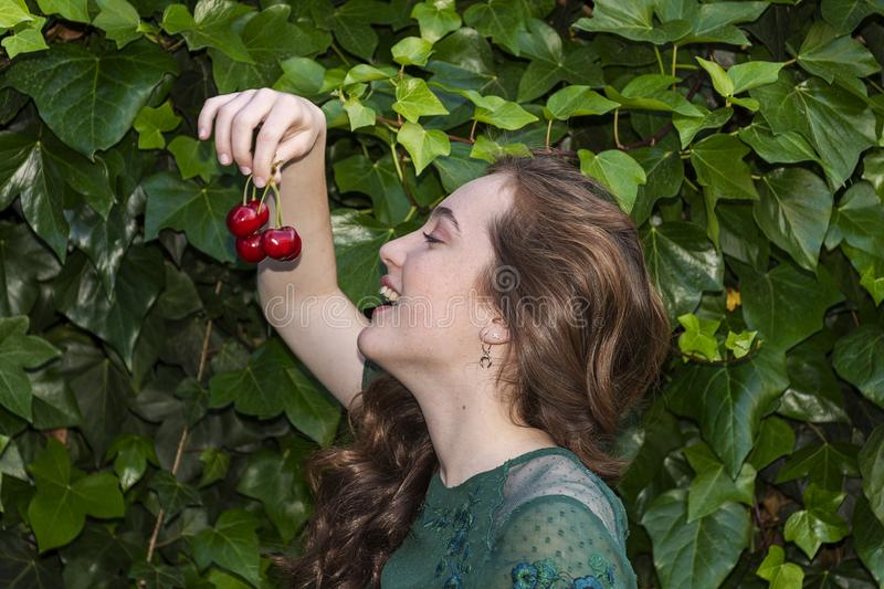 young woman holding a some cherries in her hands. Big red cherries with leaves and stalks. One person on the background. royalty free stock image