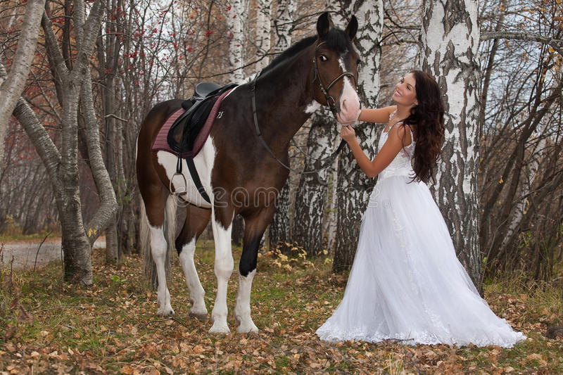 Young Woman And Horse. In a forest royalty free stock photo