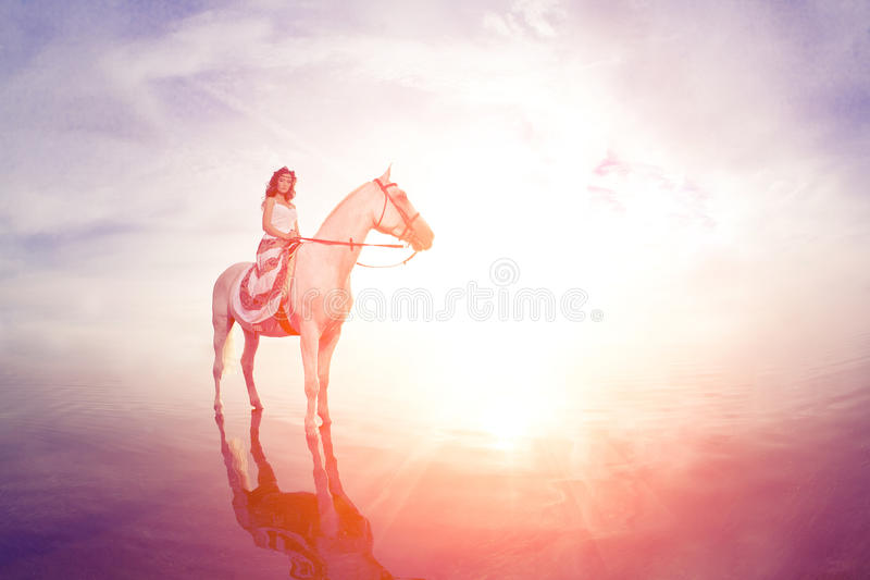Young woman on a horse. Horseback rider, woman riding horse on b royalty free stock image