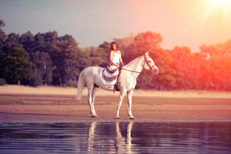 Young woman on a horse. Horseback rider, woman riding horse on b royalty free stock photo