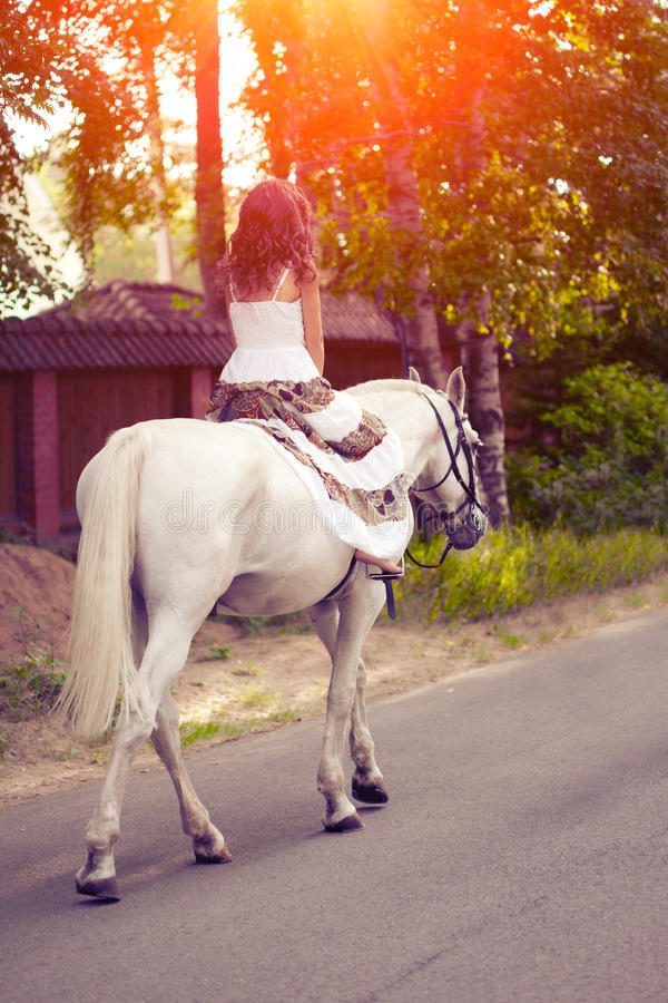 Young woman on a horse. Horseback rider, woman riding horse. Beautiful woman on a horse. Horseback rider, woman riding horse stock images