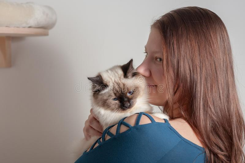 Young woman is hugging her Birman cat. Young woman is hugging her seal point Birman cat, 9 month old cat, male with blue eyes stock image