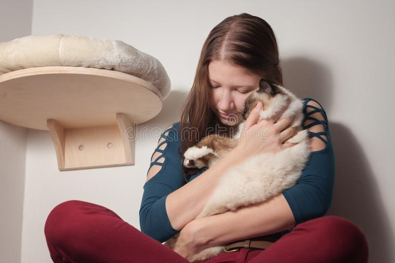 Young woman is hugging her Birman cat. Young woman is hugging her seal point Birman cat, 9 month old cat, male with blue eyes stock photography
