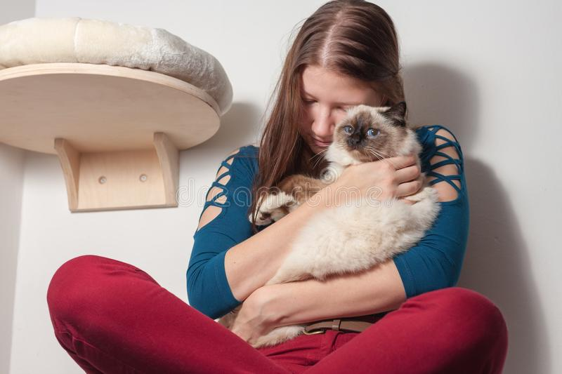 Young woman is hugging her Birman cat. Young woman is hugging her seal point Birman cat, 9 month old cat, male with blue eyes royalty free stock photos