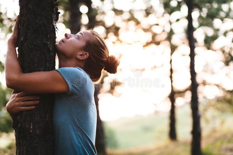 Young woman hugging tree in the forest royalty free stock photos