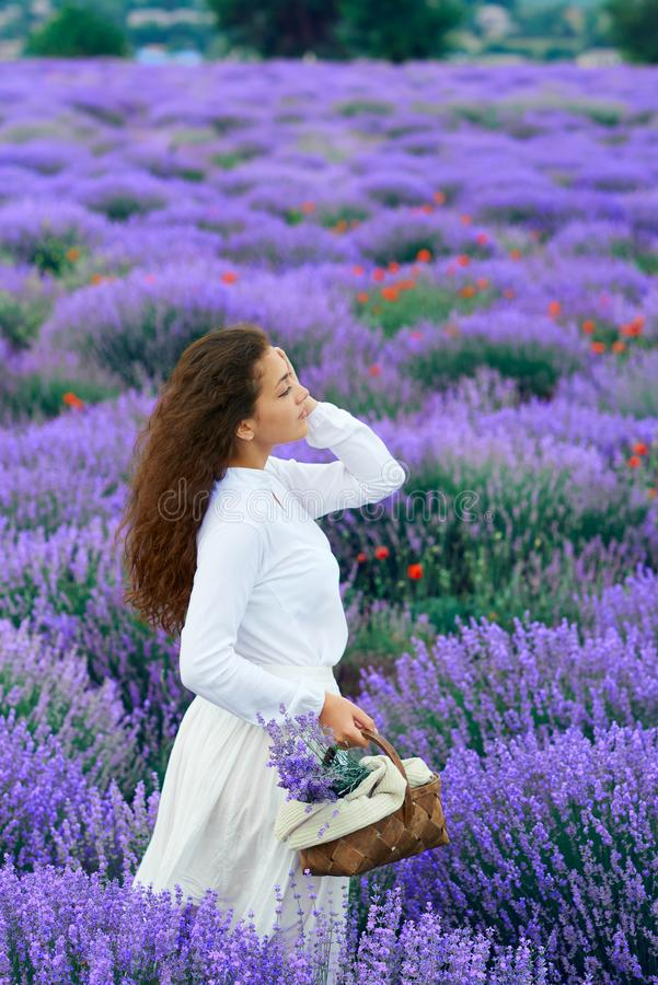 Young woman is in the lavender flower field, beautiful summer landscape royalty free stock photography