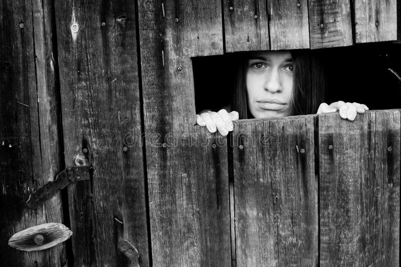 Young woman looking through the crack of a locked wooden shed. stock photography