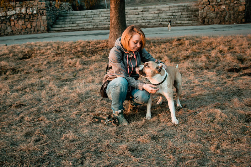 Young woman is looking at her dog in the park. stock photography