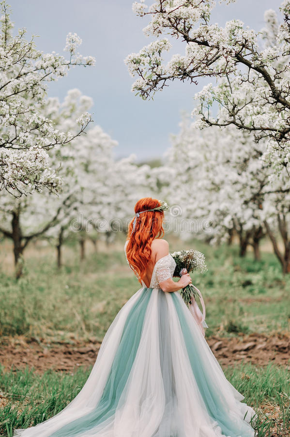 Young woman in a luxurious dress is standing in a blooming garden royalty free stock images