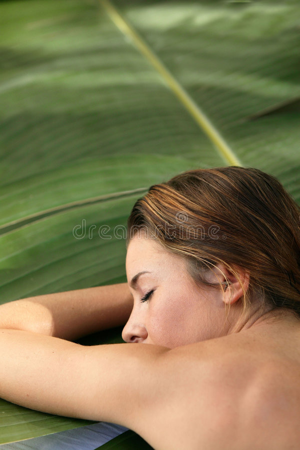 Young woman lying on leaf stock image