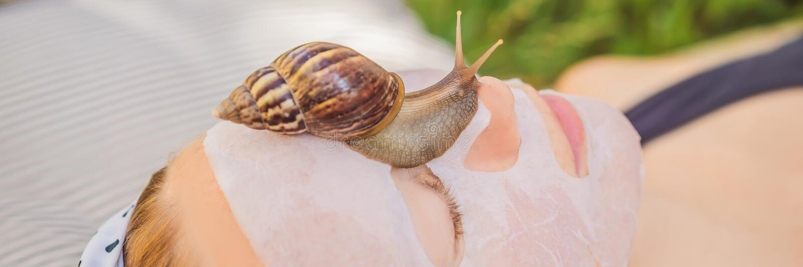 Young woman makes a face mask with snail mucus. Snail crawling on a face mask BANNER, LONG FORMAT. Young woman makes a face mask with snail mucus. Snail crawling royalty free stock photos
